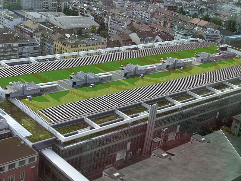 Green Roof Design Image Search Results