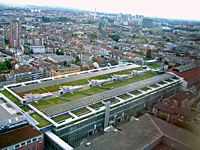 View over Green Roof Basle