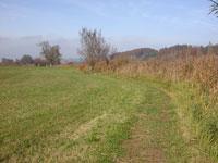 Spring view Moossee